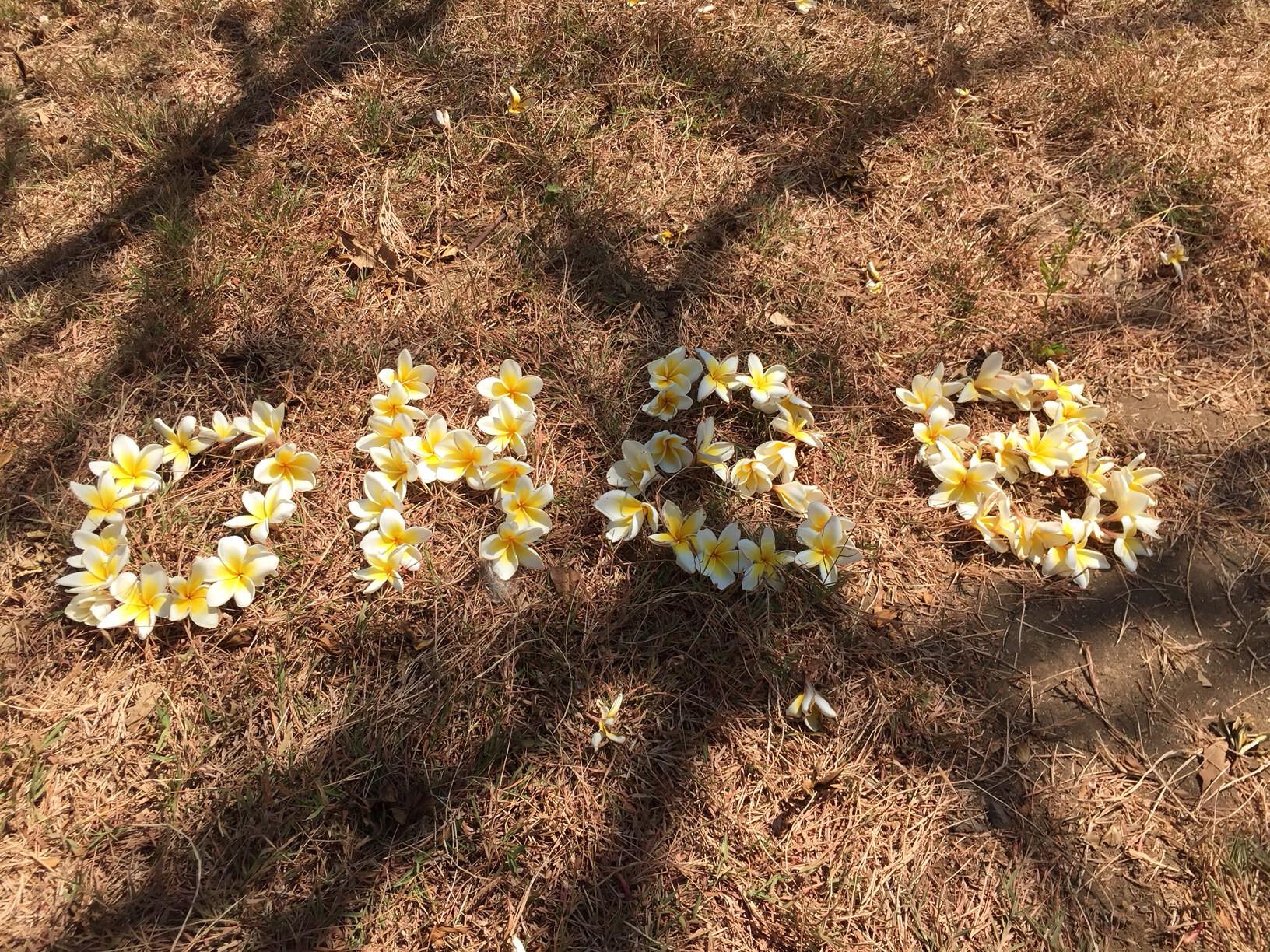 OHBB flowers